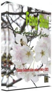 Feng Shui – Guía General de Ajustes
