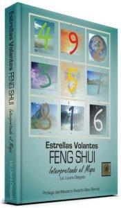 Estrellas Volantes Feng Shui – Interpretando el Mapa 1