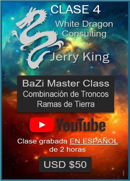 BaZi Master Class Combinación de Troncos Ramas de Tierra